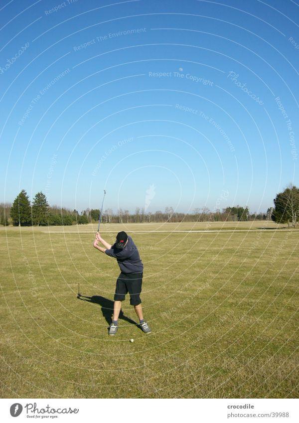 Sky Man Nature Blue Green Tree Sun Sports Lawn Golf