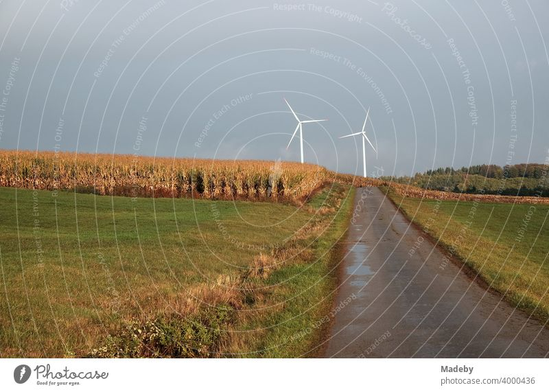 White wind turbines on the horizon at the end of a road through meadows and fields during rainy weather in Gembeck at Twistetal in the district of Waldeck-Frankenberg in Hesse, Germany
