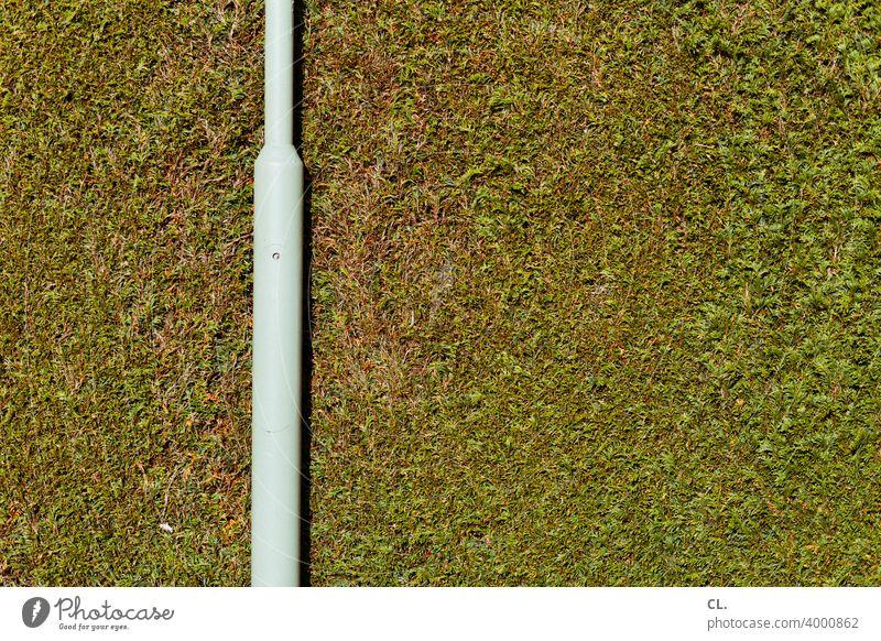 high hedge Hedge Lantern Lamp post Green Screening Boundary Tall Garden Private sphere demarcation