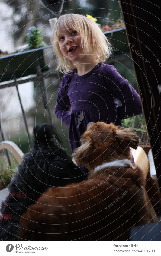 Child with two dogs Pet Dog fortunate Love of animals Children and animals Man and dog Animal Infancy Humans and animals Girl Friendship Watchdog