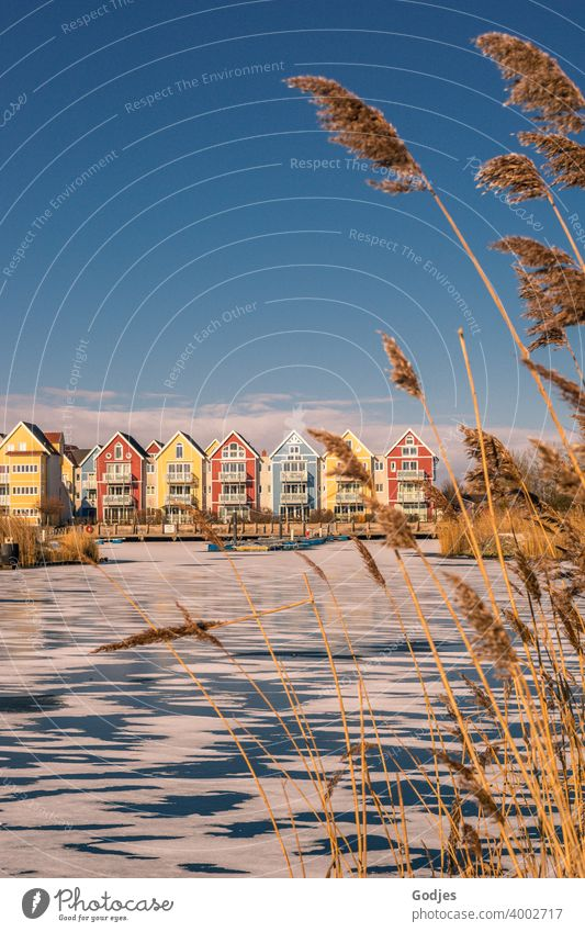 Swedish houses / coloured wooden houses on a partly frozen river framed by reeds Panorama (View) Sunset Sunrise Evening Serene Skerry Colour photo Exterior shot