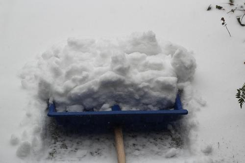 A blue snow shovel with pushed snow close up white winter outside outdoors side walk sweep snowing work winter service season weather photography day cold chill