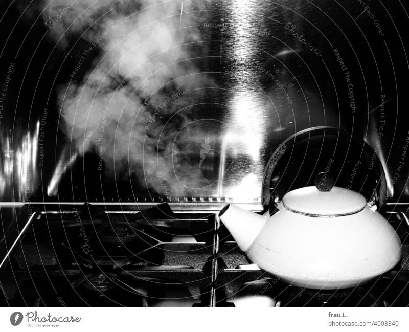 A kettle makes steam Boiler Cooking hob Gas High-grade steel reflection Water Steam boil Kitchen