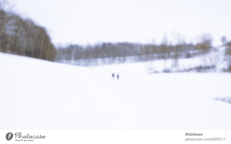 Snow walking blurred like ghosts in the middle of the picture Winter Ice Nature Cold blurriness Unrecognizable Frost Exterior shot Colour photo Day