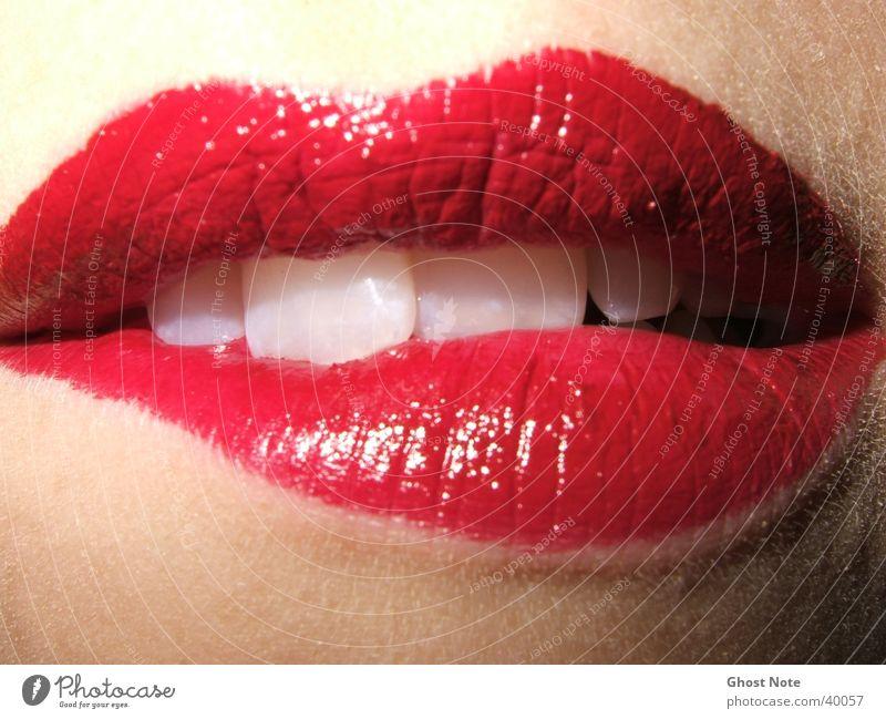 KISS ME, BITE ME! Lips Feminine Woman Kissing Red Lipstick Mouth Teeth