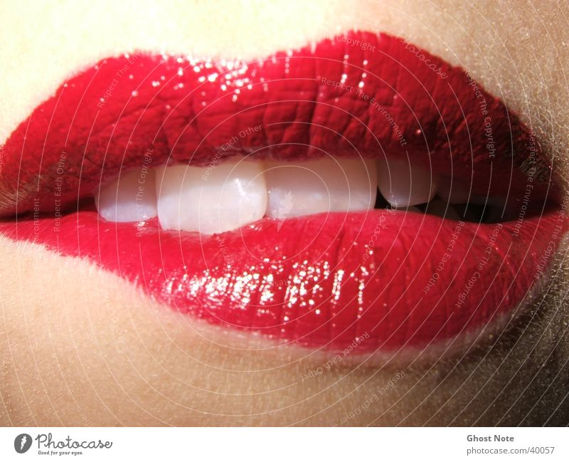 Woman Red Feminine Mouth Teeth Lips Kissing Lipstick Human being Caresses