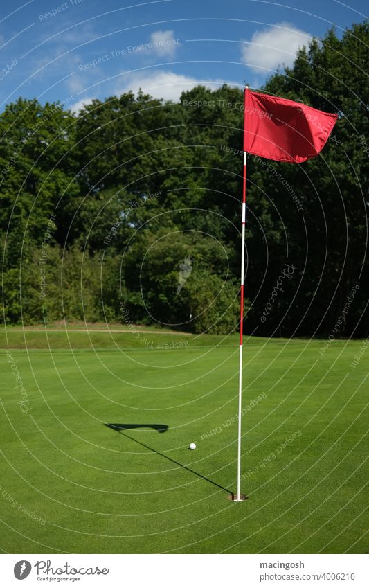 Empty golf course with ball and flag Golf course empty golf course Sports Sporting grounds Leisure and hobbies Exterior shot Restrictions lockdown golfing green