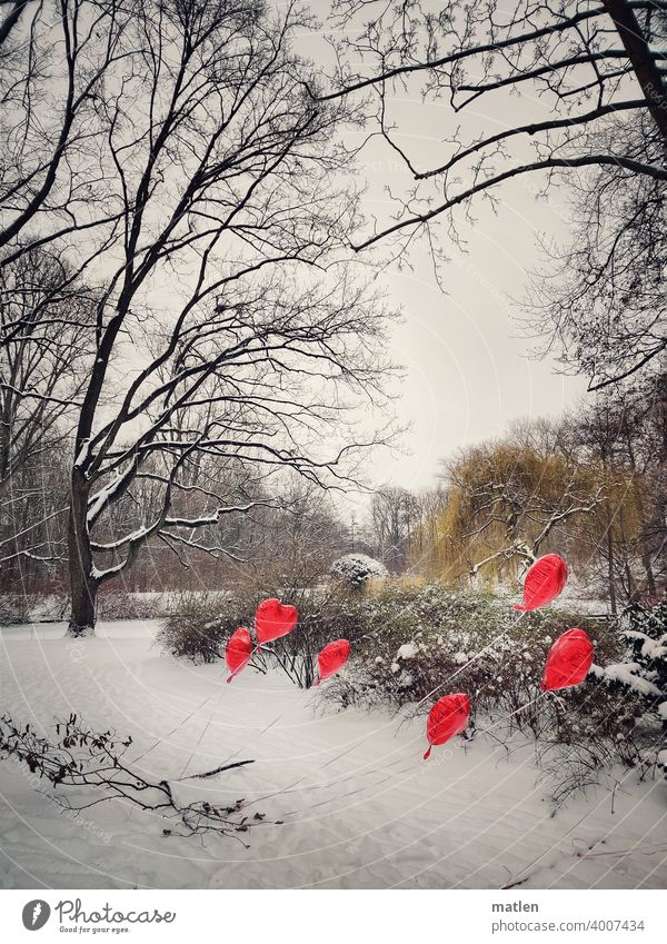 Cold hearts Heart Balloon Winter Snow Tree shrub Deserted Exterior shot Frost Landscape Sky Day Wind