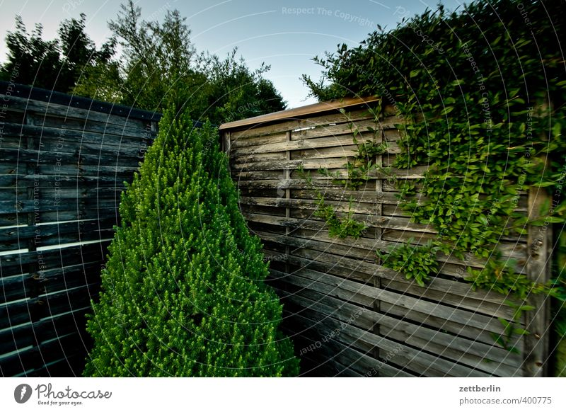 Plant Summer Loneliness Wall (building) Wall (barrier) Garden Park Weather Lifestyle Beautiful weather Border Tradition Stagnating Town Neighbor Outskirts