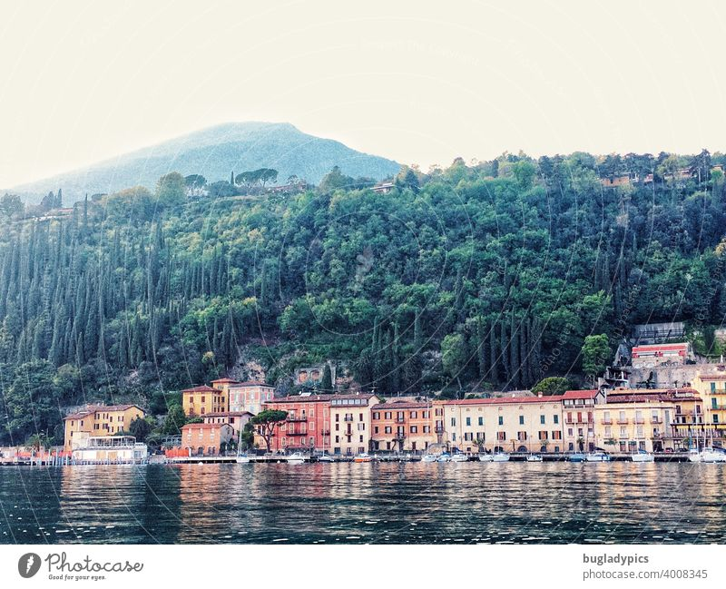 Italia - Lake Garda houses colorful houses variegated Lakeside Town Building Forest Mountain Slope Hill trees boats Landscape Vacation & Travel hazy hazy sky