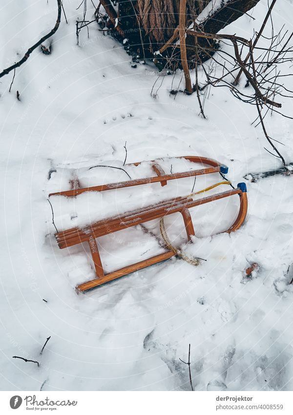 What remained of the tobogganing: Sledges in the snow Central perspective Deep depth of field Contrast Shadow Copy Space bottom Copy Space top Copy Space left