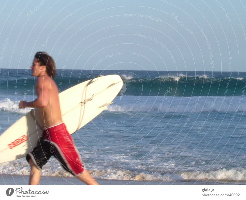 Man Water Sun Ocean Summer Beach Vacation & Travel Sports Playing Brown Walking Leisure and hobbies Surfing Wooden board Australia Surfer