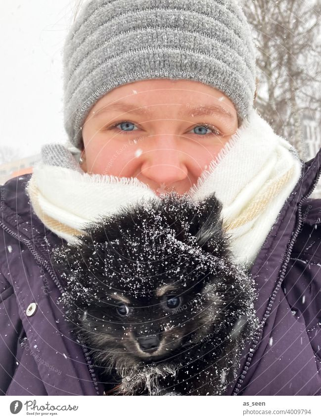 Young woman carries Black Pomeranian puppies through the snow Pygmy Spitz breed of dog blue eyes Looking into the camera Joy Love of animals Snowflake