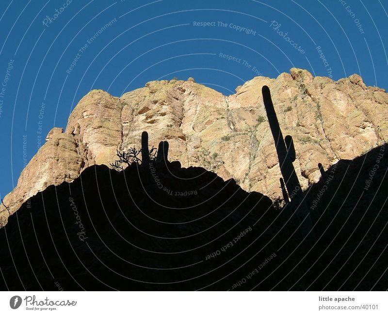 Apache Country Hill Cactus Native Americans Cowboy Western Arizona Mountain Rock Stone Shadow USA