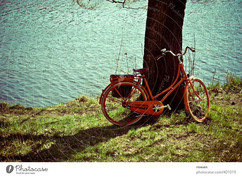 rest Cycling Warmth Red Tree Tree trunk Ladies' bicycle Break Lean River River bank Lake Lakeside Coast Sun Sunlight Summer Summery Cycling tour Bicycle pannier
