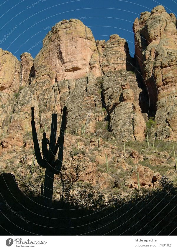 Apache Trail Arizona Cactus Dusk Native Americans Western Cowboy Mountain USA Rock Stone Shadow