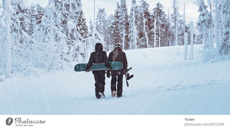WEB banner format. Two frends snowboarders are walking through the winter forest. Snowboarding in the forest in the mountains. Backcoutry or freeride style. Life style.