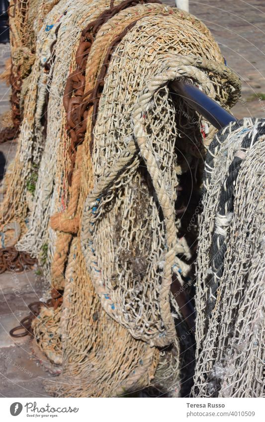 Fishing nets hanging up to dry Net Maritime Work and employment Catching net Subdued colour Detail Close-up Structures and shapes Colour photo gear