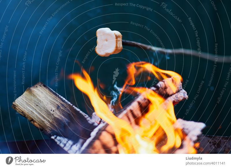 Marshmallow roasting over the fire flames. Marshmallow roasted on a skewer on the campfire Adventure background barbecue Bonfire Storage Candy Tenacious