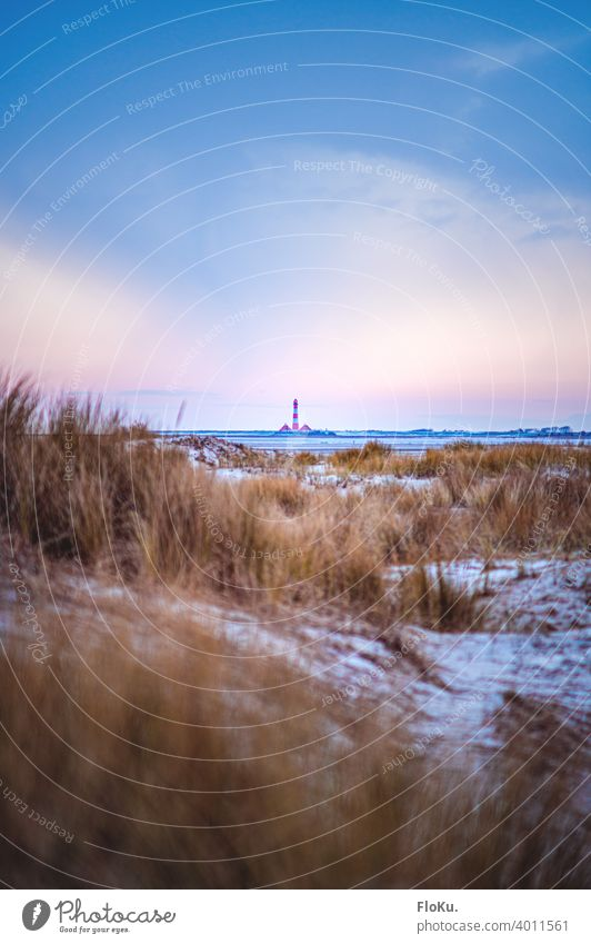 Lighthouse Westerhever behind the dunes of St. Peter-Ording North Sea North Sea coast Beach Ocean Vacation & Travel Exterior shot Sand Sky Relaxation Landscape