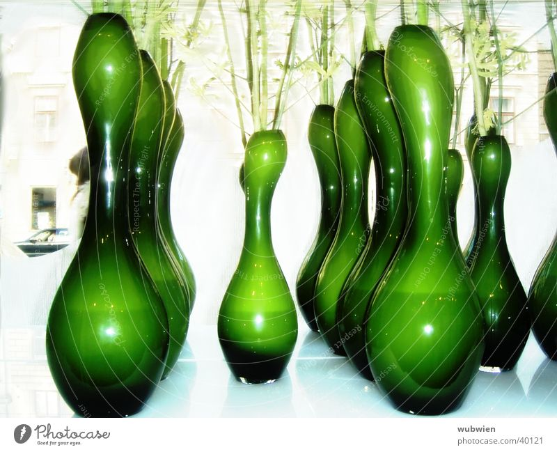 Flower Green Glass Living or residing Store premises Vienna Vase Flower shop