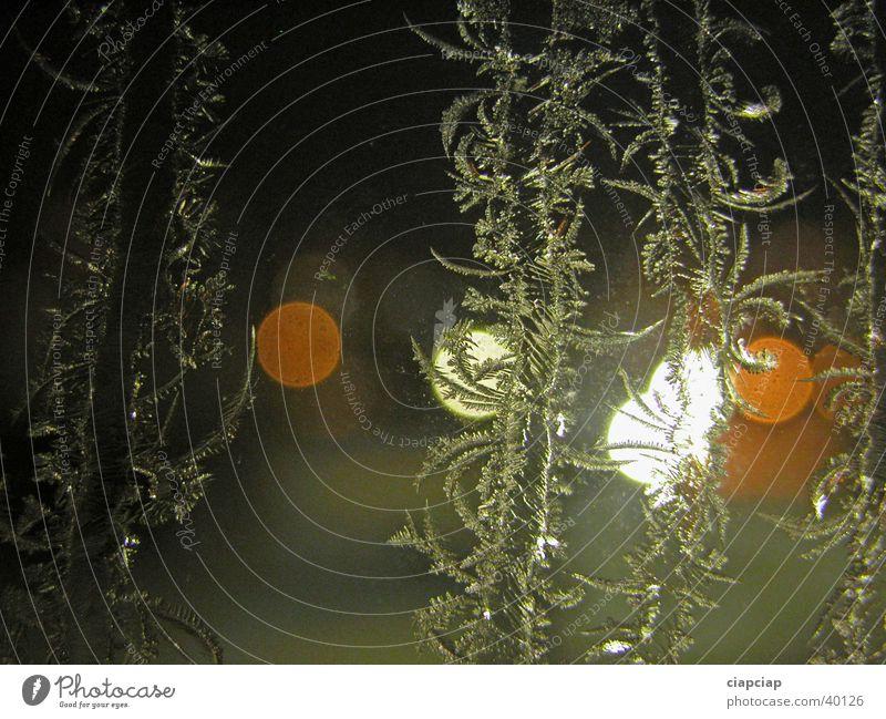 Window Hoar frost