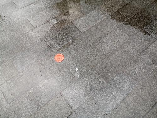 Red plastic dot on wet grey pavement during rain in Frankfurt am Main in Hesse, Germany Point Plastic paving Gray Rain Wet Rainy weather mark accent