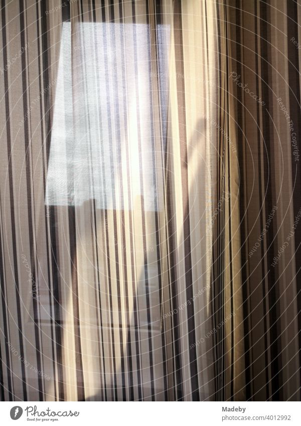 Light play on a curtain in the morning in a penthouse in the Nordend in Frankfurt on the Main in Hesse Drape Curtain Window Visual spectacle Light shows