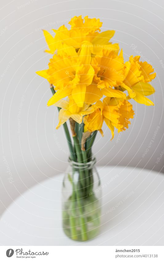 In the middle is a bouquet of daffodils in a vase on a table Narcissus Easter Spring celebrations Seasons Flower Yellow Colour photo Feasts & Celebrations