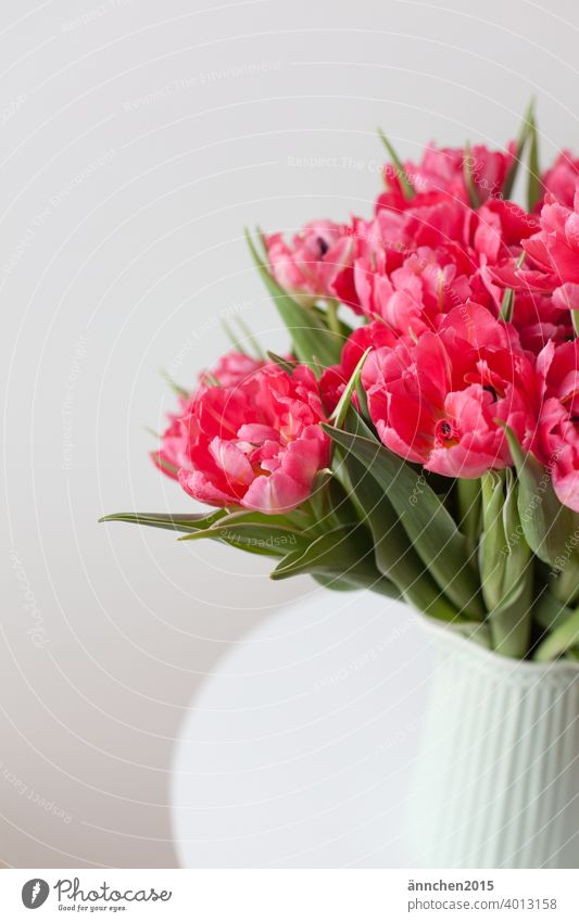 A bouquet of pink tulips in a light turquoise vase Vase Bouquet Tulip Flower Colour photo Interior shot Spring Blossom Blossoming Decoration Deserted Green Pink