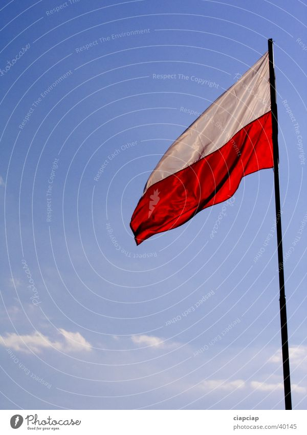 Flag Trade fair Exhibition Poland