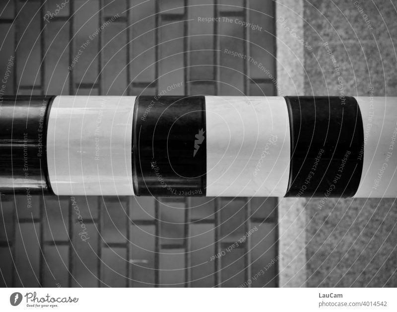 Strip in front of a house wall Stripe brick Facade House (Residential Structure) Architecture Wall (building) Building Town Exterior shot Detail piers Pattern