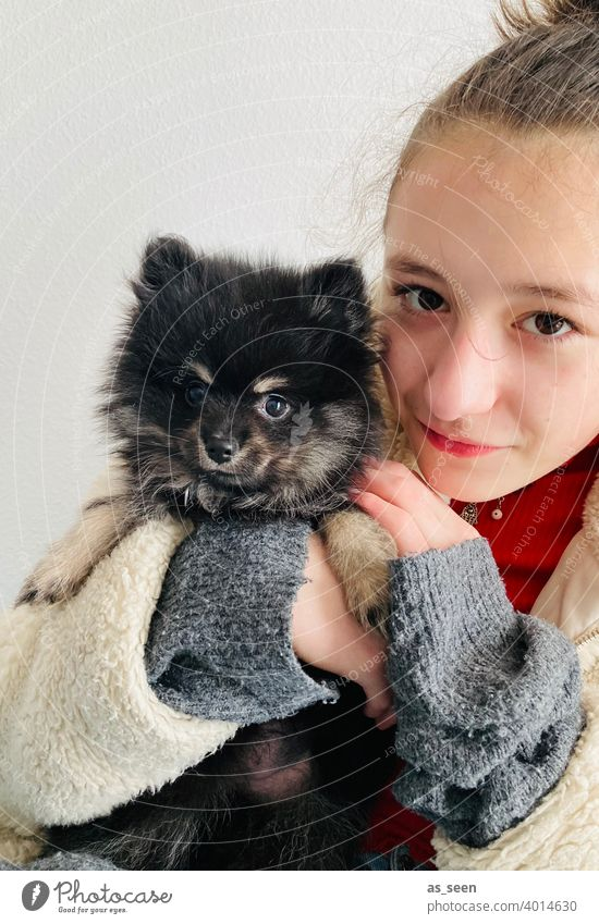 Girl holding Black Pomeranian puppy in her arms Pygmy Spitz breed of dog Looking into the camera Joy Love of animals Colour photo 1 Animal Pet Day Dog Cute