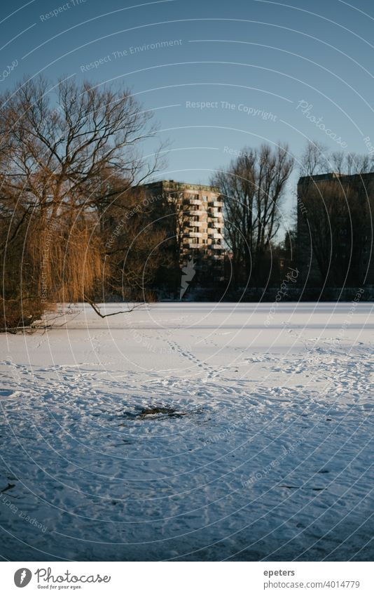 Frozen and fully snowed Appelhoffweiher lake with prefabricated building in the background Prefab construction Panel construction Steilshoop Blue Shadow Window