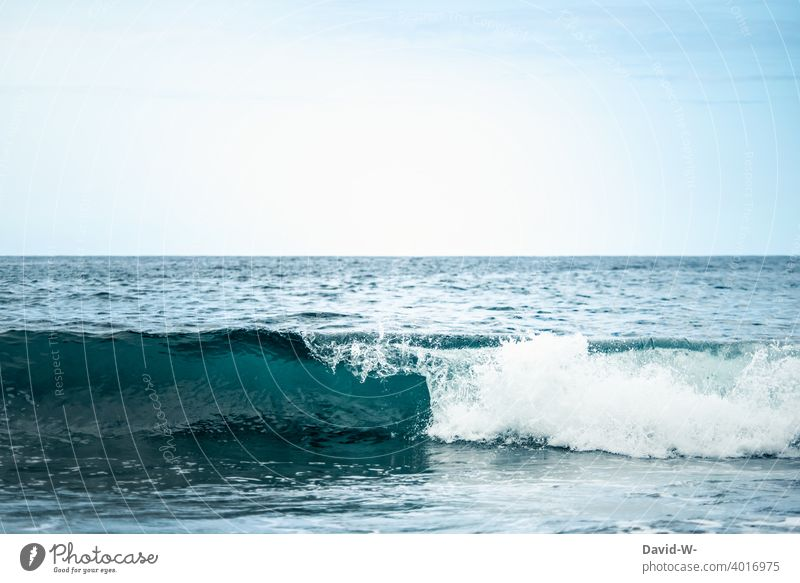 Development of a wave in the sea ocean Ocean Blue Force Water Waves vacation Nature Sky