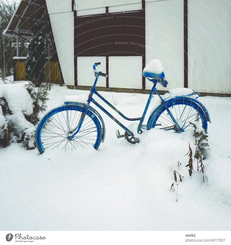 blue-frozen Snow Bicycle Outdoors Nature Frost Cold Winter Cycling Mobility snow-covered Winter mood outdoor activities Winter vacation snowed in Defective