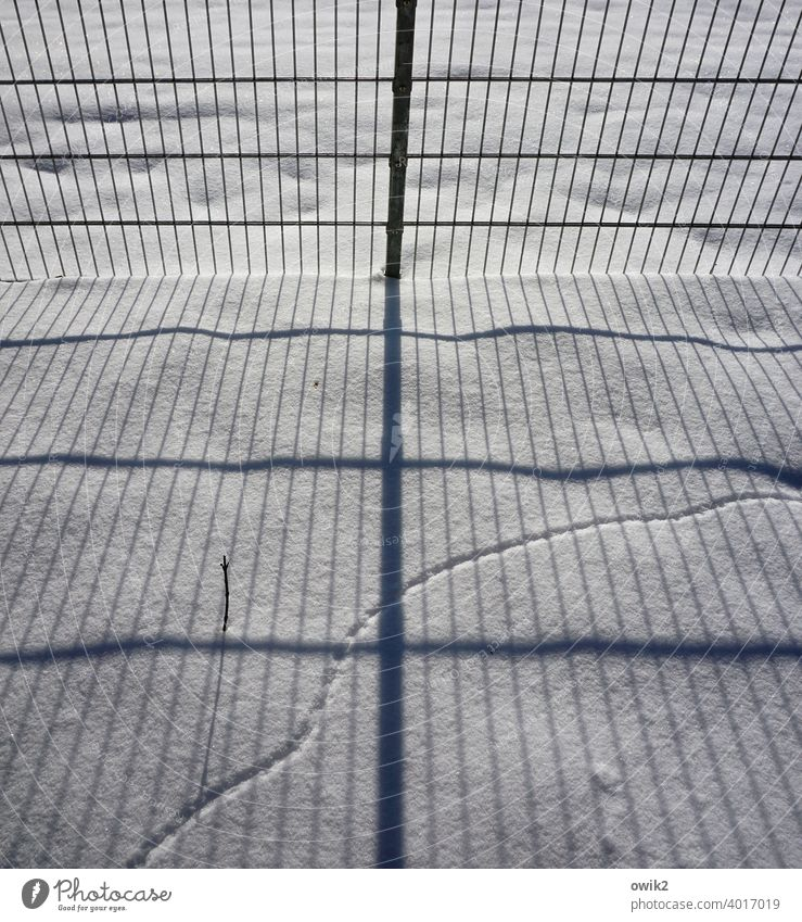 A question of calculation Snow Snow layer Fence Grating Metal Boundary Boundary line Barrier Sunlight Shadow Complex parallels Curve trace Animal Trace