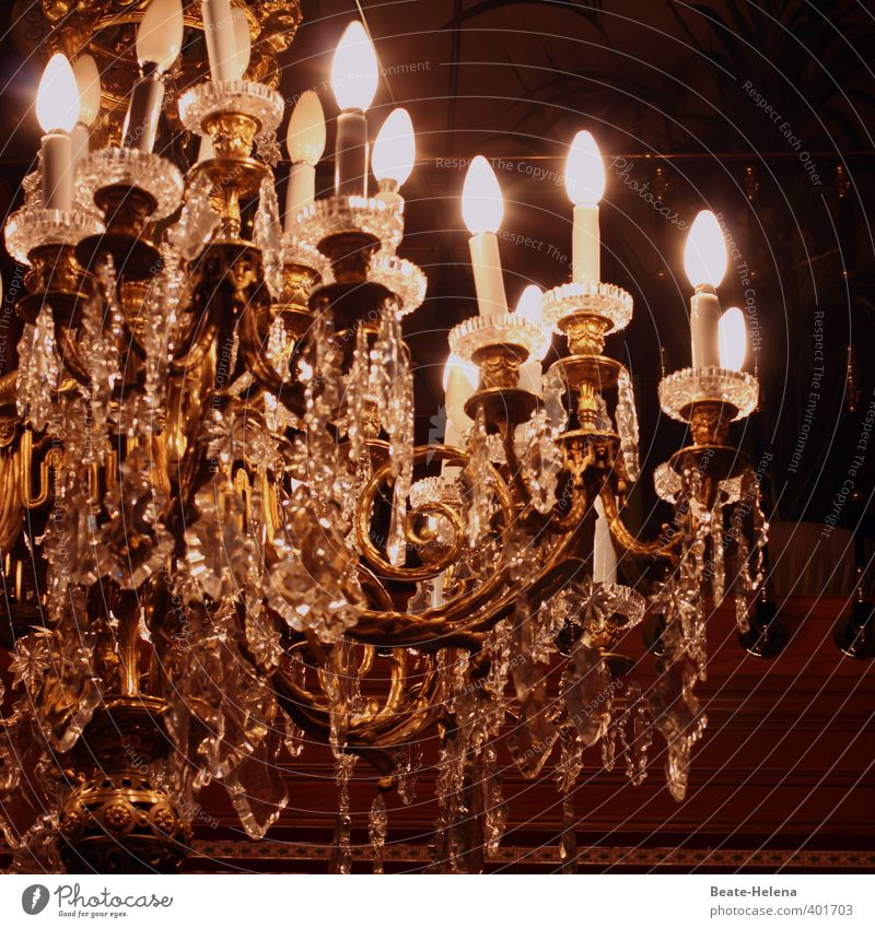 when the days get shorter Lifestyle Elegant Style Living or residing Lamp Chandelier Decoration Relaxation Glittering Esthetic Exceptional Moody Contentment