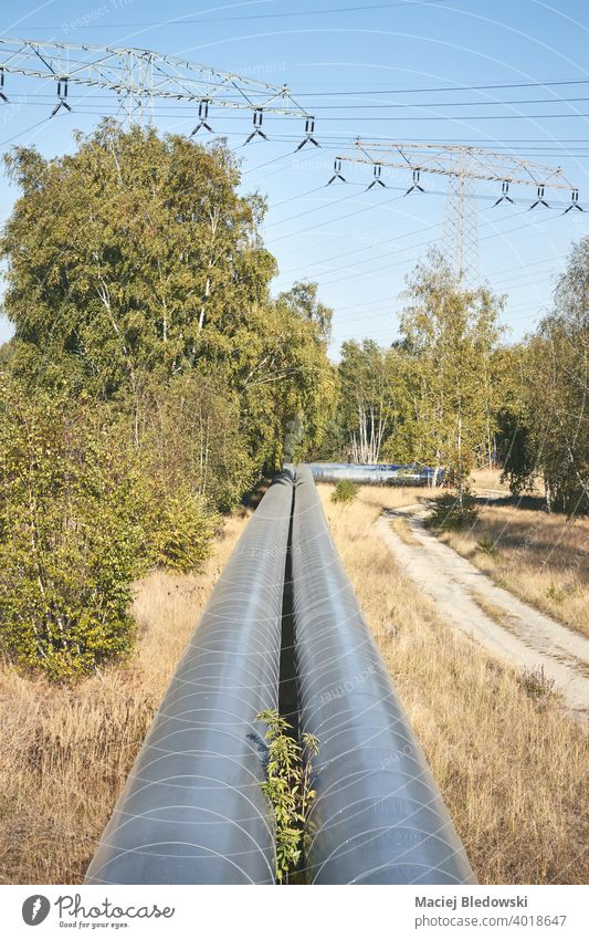 Pipeline with high voltage pylons in the background in a forest. Forest Gas Nature Heating Industry Force Energy Technology Environment Line Business