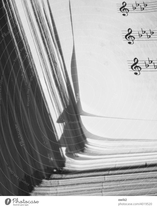 Notebook Sheet music Detail notes staff lines Clef Paper score Corner Musical notes Art Black & white photo Deserted Thin Simple music notation Sound Leaf