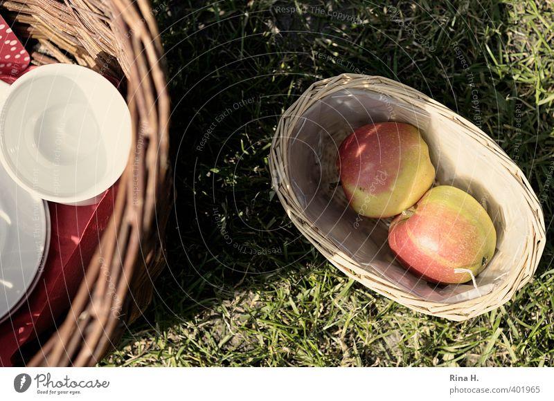 Picnic II Apple Crockery Cup Lifestyle Relaxation Calm Trip Beautiful weather Meadow Warmth Joy Happiness Joie de vivre (Vitality) Wicker basket Basket