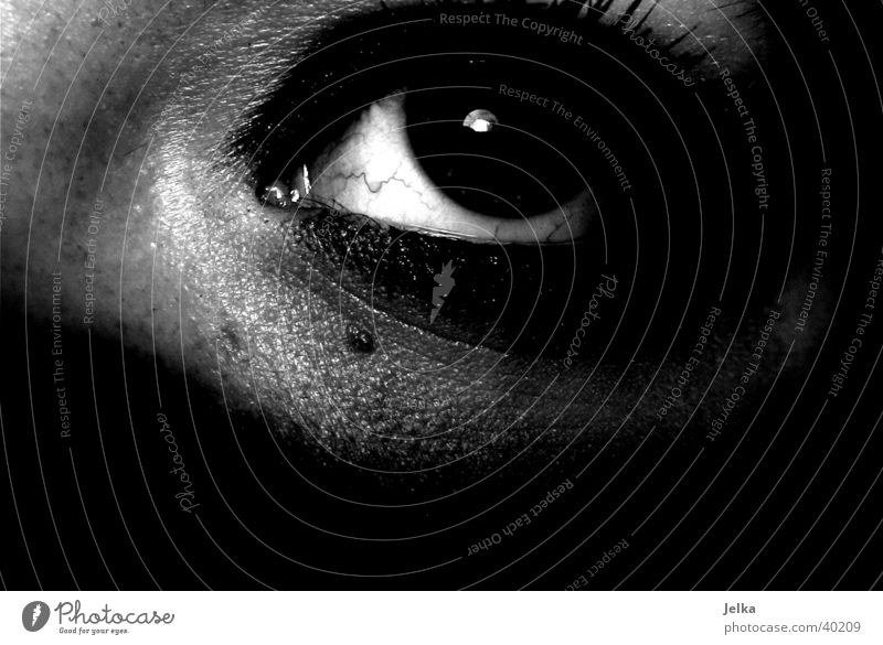 Woman White Black Face Adults Eyes Eyelash