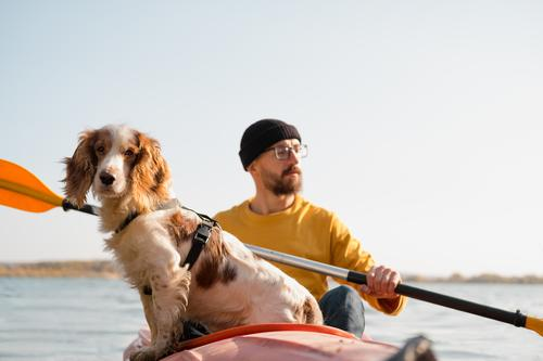 Man with a dog in a canoe on the lake. Young male person with spaniel in a kayak row boat, active free time with pets, companionship, adventure dogs active rest