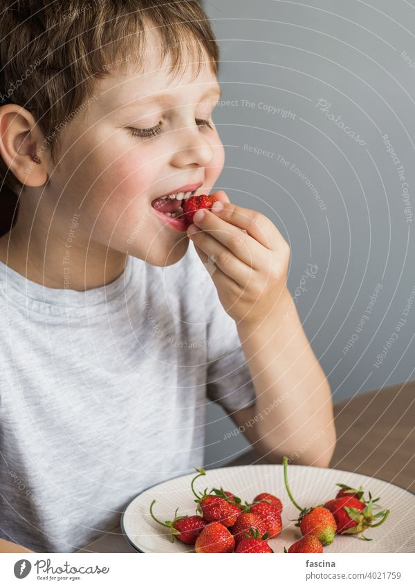 Little boy eats fresh organic strawberry with relish kid child happy smile blank board message paper sheet space white hold person caucasian beautiful young