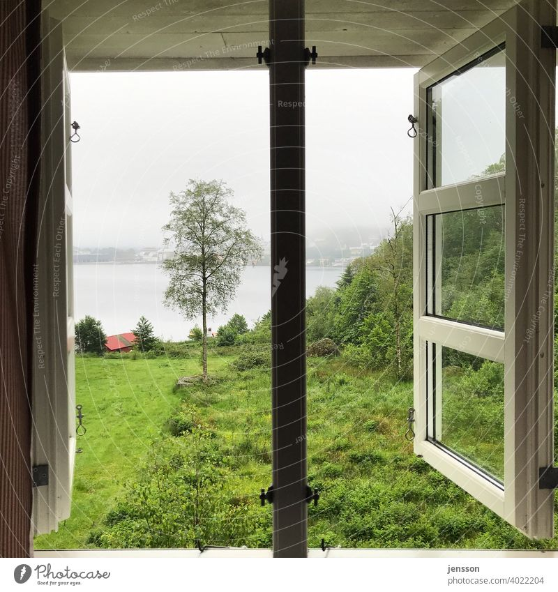 View from the window to the fjord Wanderlust Longing Nature Norway Window outlook Lattice window View from a window Looking Vacation & Travel Deserted Day
