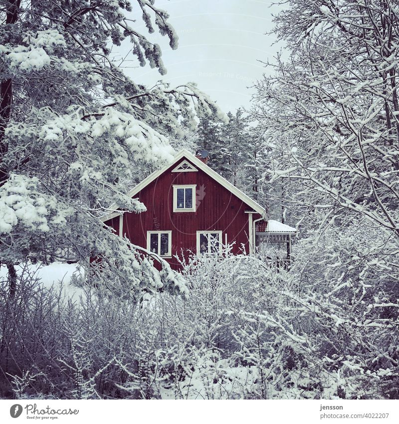 Red swedish house in the snow Winter Winter mood winter Winter's day Wood Wooden house Swede Swedish house Swedish red Snow White snow-covered Scandinavian