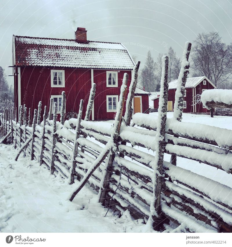 Winter in Sweden Swedish house Fence Wood Smaland Scandinavia Scandinavian Snow Winter mood Calm snowy Dreamily Snowscape Cold Winter's day Freeze