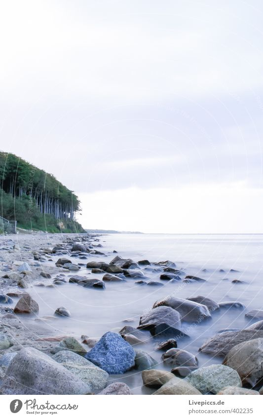 Sky Nature Blue Green Water Plant Tree Ocean Landscape Clouds Beach Forest Environment Cold Autumn Coast