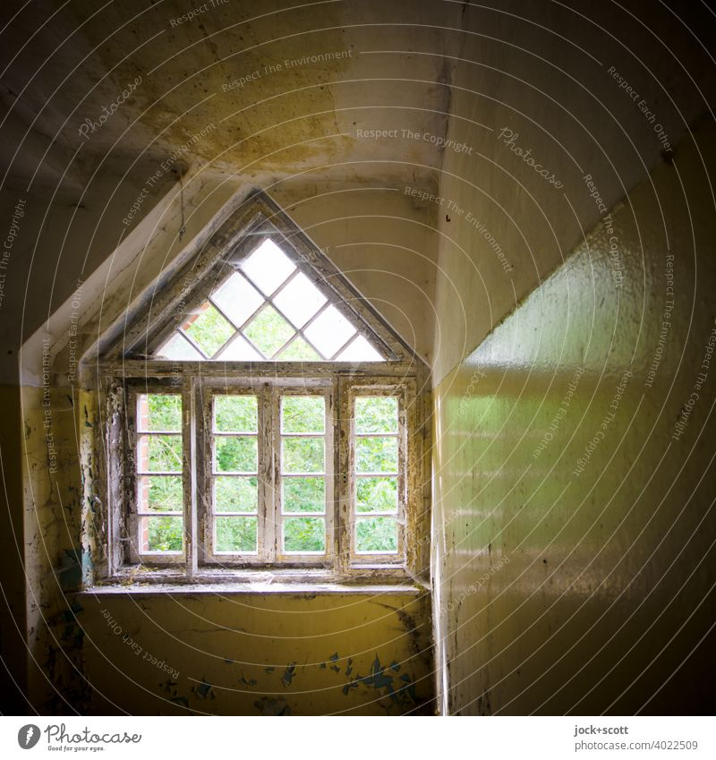 Window reflected in the lost space lost places Architecture Ravages of time Derelict Apocalyptic sentiment Structures and shapes Reflection Ruin Symmetry Style
