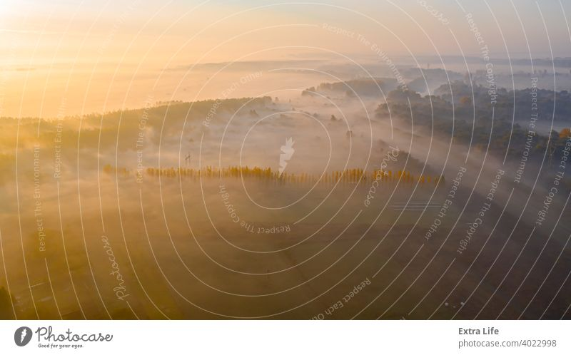 Shot above landscape, several cultivated plots and part of forest Above Aerial Agricultural Agriculture Arable Autumn Border Canopy Colorful Country Cultivated